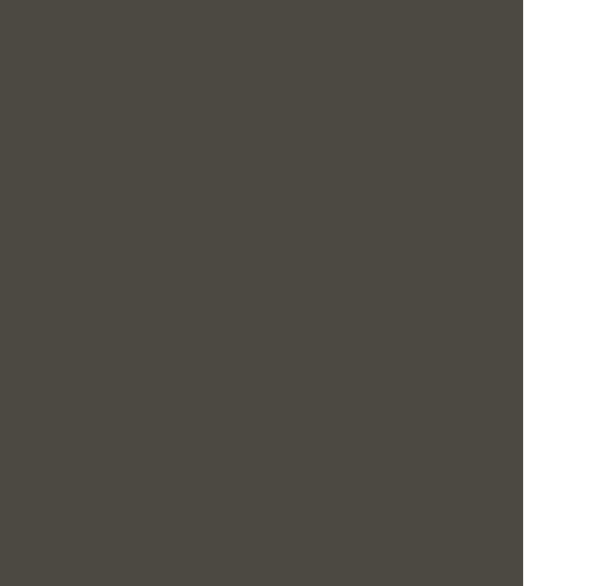 竜ノ巣 リュウノス ロゴ